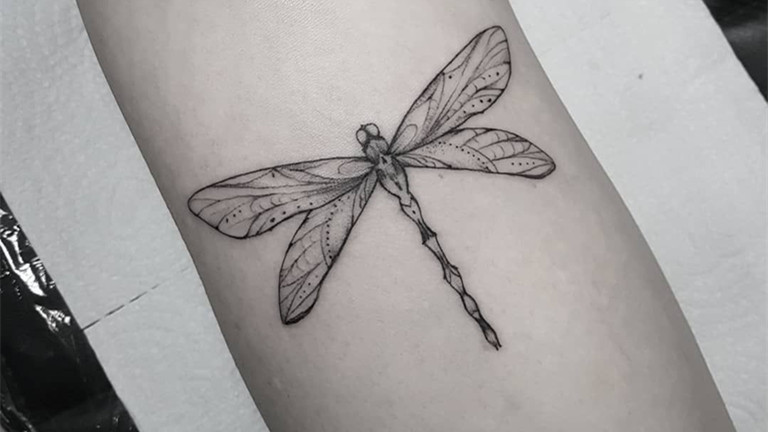 The Meaning Behind a Dragonfly Tattoo